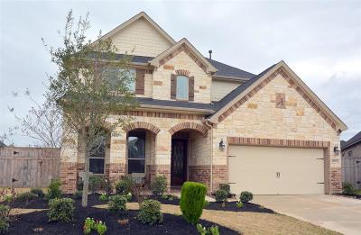 Fulshear Single Family Home For Sale: 28003 Lone Rock Court