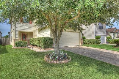 Houston Single Family Home For Sale: 2719 Skyview Glen Court