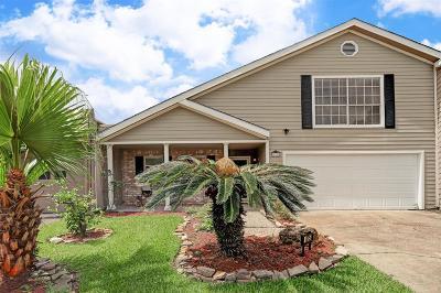 Houston Single Family Home For Sale: 10750 Boardwalk Street
