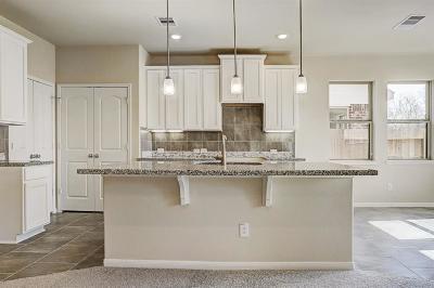 Rosenberg TX Single Family Home For Sale: $259,518