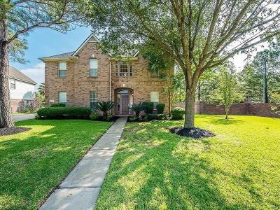 Katy Single Family Home For Sale: 3315 Canyon Links Drive