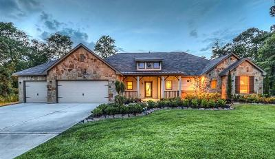 Houston Single Family Home For Sale: 28711 Riverside Crest Lane