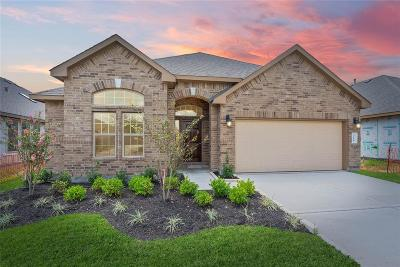 Katy Single Family Home For Sale: 3118 Francisco Bay Place