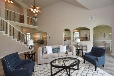 Tomball Single Family Home For Sale: 11906 Mariposa Canyon Drive