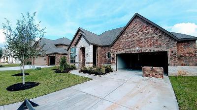 Katy Single Family Home For Sale: 25519 Fleming Lodge