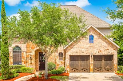 Sugar Land Single Family Home For Sale: 719 Doscher Lane
