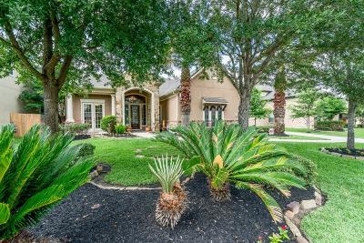 Tomball Single Family Home For Sale: 12022 Hodges Grove Lane