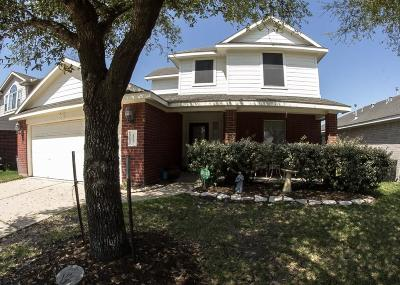 Houston Single Family Home For Sale: 1223 Lavender Shade Court