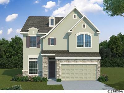 Houston Single Family Home For Sale: 10507 Rosemount Trace