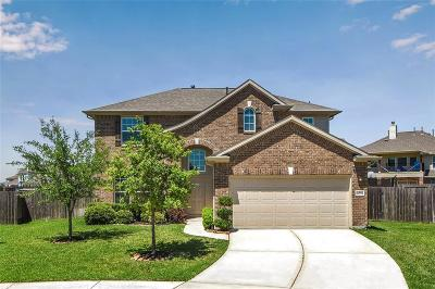 Hockley Single Family Home For Sale: 16026 David Hill Lane