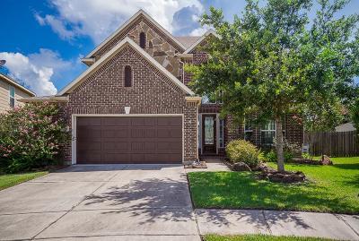 League City Single Family Home For Sale: 6154 Granger Lane