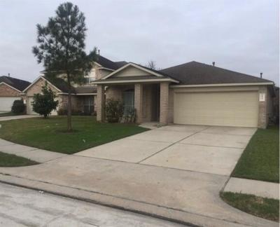 Houston Single Family Home For Sale: 20919 New Leaf Court