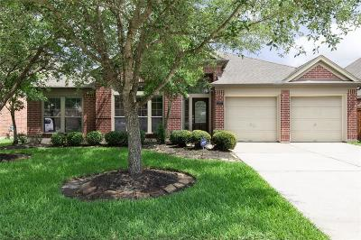 Pearland Single Family Home For Sale: 13703 Evening Wind Drive