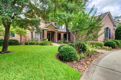 The Woodlands Single Family Home For Sale: 15 S Brokenfern Drive