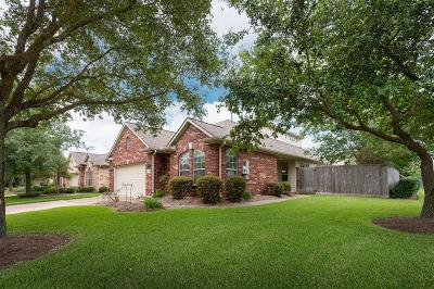 Pearland Single Family Home For Sale: 1301 Modena Drive