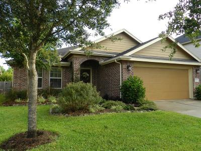 Tomball Single Family Home For Sale: 12634 Ember Village Lane