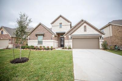 Lakes Of Savannah Single Family Home For Sale: 4606 Bisontine Bay Lane