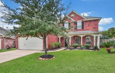 Houston Single Family Home For Sale: 12511 Wortham Falls Boulevard