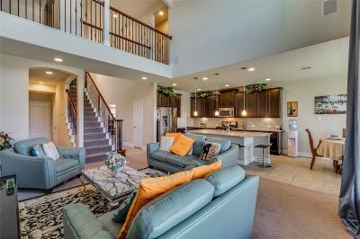 Katy Single Family Home For Sale: 3811 Goldleaf Trail Drive