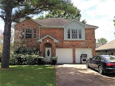 Sugar Land Single Family Home For Sale: 17110 Tranquil Drive