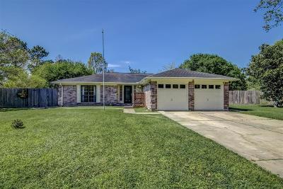 Katy Single Family Home For Sale: 302 Buckeye Drive