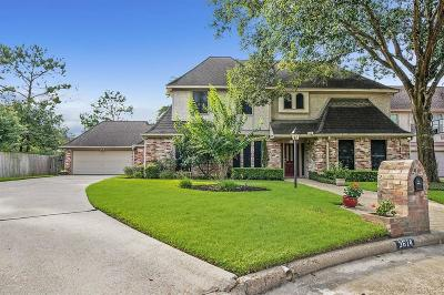Houston Single Family Home For Sale: 3614 Braewin Court