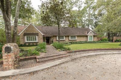 Houston Single Family Home For Sale: 10933 Long Shadow Lane
