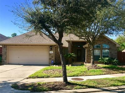 Tomball Single Family Home For Sale: 19523 Papago Drive