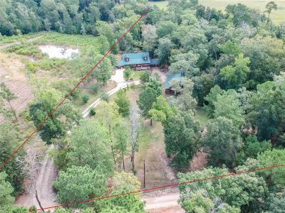 Polk County Single Family Home For Sale: 498 Glen Nettles Road