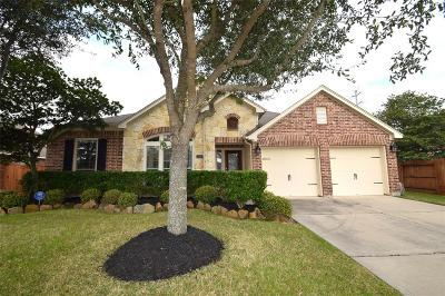 Pearland Single Family Home For Sale: 13601 Rainwater Drive