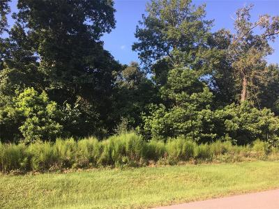 Spring Residential Lots & Land For Sale: 27319 Shady Hills Landing Lane