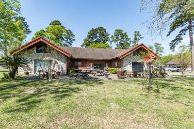 Porter Single Family Home For Sale: 23471 W Fm 1314 Lane