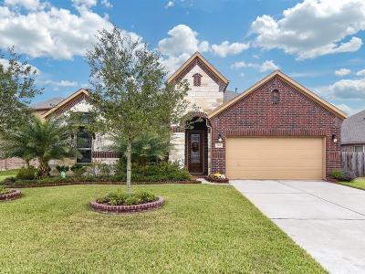 League City Single Family Home For Sale: 660 Cumberland Ridge Lane