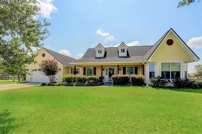 Sealy Single Family Home For Sale: 1528 Hintz Road