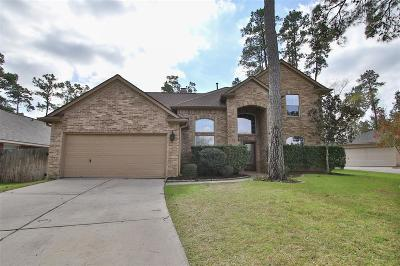 Tomball Single Family Home For Sale: 1327 Pine Trail