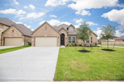 League City Single Family Home For Sale: 2309 Sterling Hollow Lane