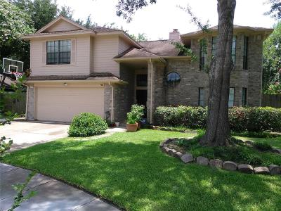 Sugar Land Single Family Home For Sale: 16307 Mulberry Run Court
