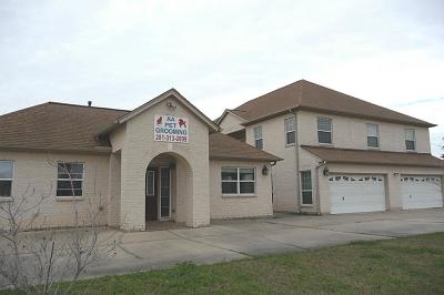 Sugar Land Single Family Home For Sale: 11010 Burney Road