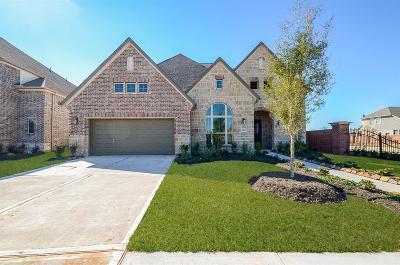Missouri City Single Family Home For Sale: 2423 Calling Bird Court