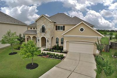 Katy Single Family Home For Sale: 24902 Bay Mist Ridge Lane