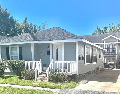Houston Multi Family Home For Sale: 813 Alexander Street