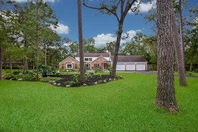 Pearland Single Family Home For Sale: 1601 Willits Street