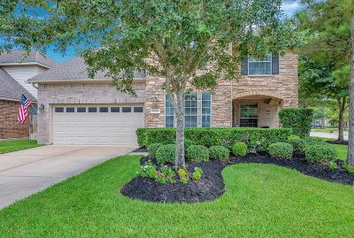 Katy Single Family Home For Sale: 9702 Dover Springs Court