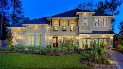 Houston Single Family Home For Sale: 13210 Walston Springs Court