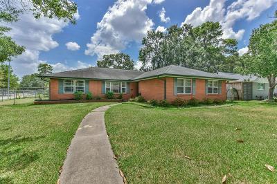 Houston Single Family Home For Sale: 6203 Cindy Lane