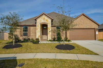 Katy Single Family Home For Sale: 3207 Emerald Valley Drive