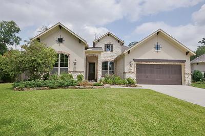 Porter Single Family Home For Sale: 19800 Cullen Ridge