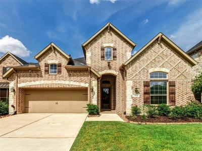 Pinehurst Single Family Home For Sale: 511 Arbor Point Court