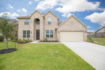 Tomball Single Family Home For Sale: 19110 Nearly Wild Way
