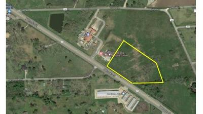 Brazoria Residential Lots & Land For Sale: S Hwy 36